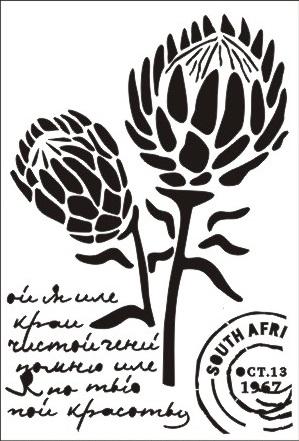 En Arty Stencil Proteas Simply Creative